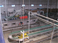 Conveying chain